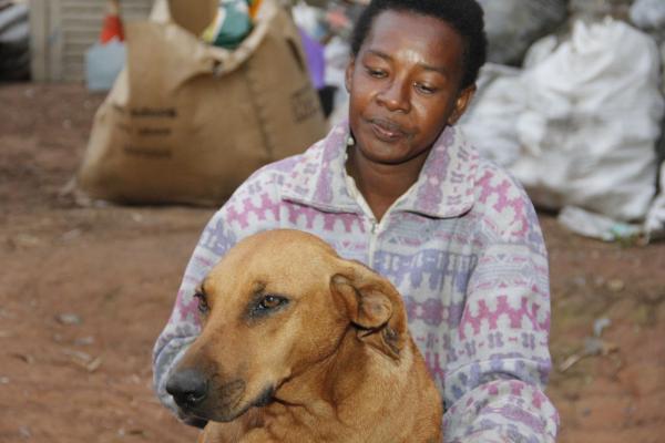 Cadela que levava marmita morre após ser picada por cobra: 'Arrasada', diz dona