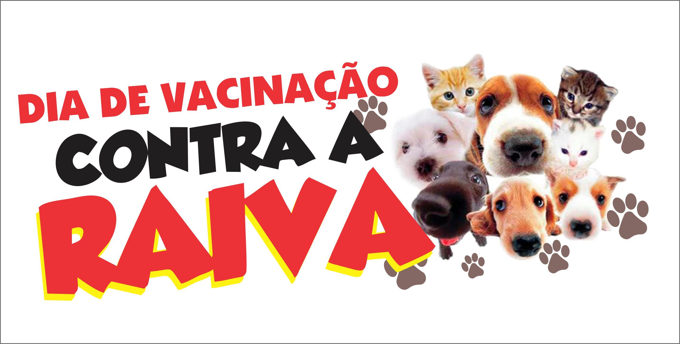 Alvorada do Oeste - Divisão de vigilância realizará vacinação contra raiva para cães e gatos