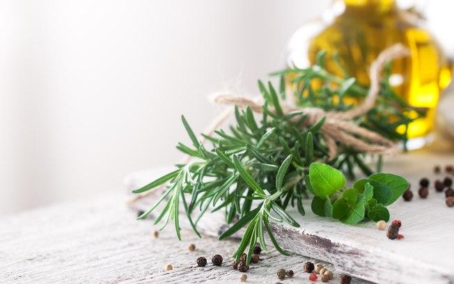 Como cultivar temperos em casa? Aprenda a plantar e cuidar da sua horta