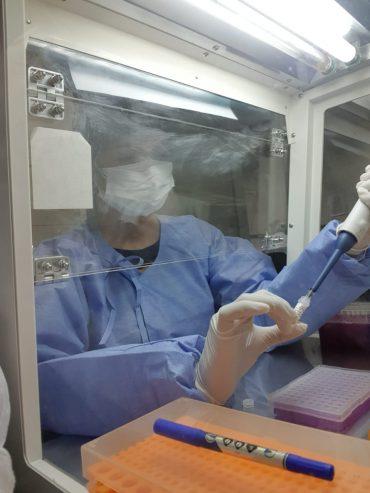 Parceria entre Fiocruz RO e Lacen amplia diagnóstico e reduz tempo de espera por resultado de exames