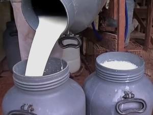 Em Rondônia, litro de leite resfriado é vendido por R$ 0,88, diz Emater