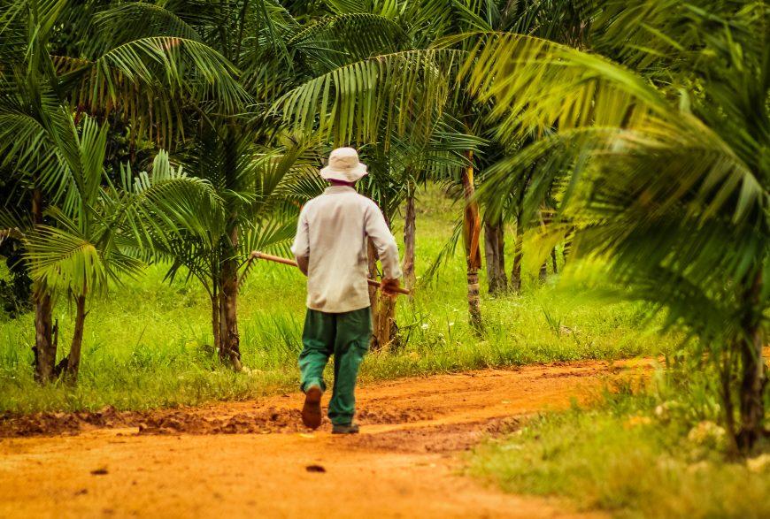Governo assina termo de cooperação com o Incra para avançar na regularização fundiária e tornar Rondônia referência nacional