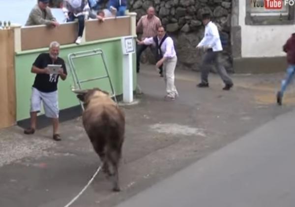Homem decide filmar em vez de correr de touro e acaba chifrado