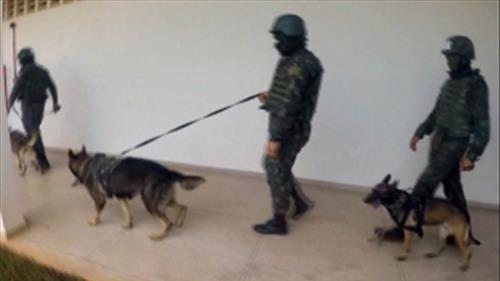 Exército faz operação nos presídios Pandinha e Ênio Pinheiro